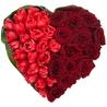Сердце из тюльпанов и роз «Нескончаемая страсть»