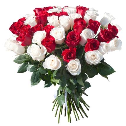 51 роза: красная и белая