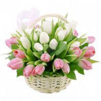 Корзина с тюльпанами «Итальянка»