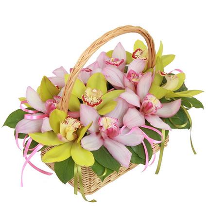 Борзина с орхидеями микс