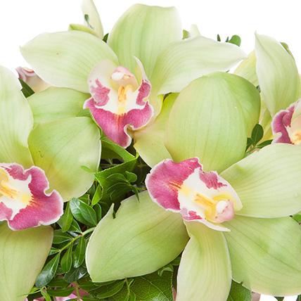 Композиция с орхидеями «Маленькое чудо»