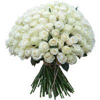 151 белая роза (40 см)