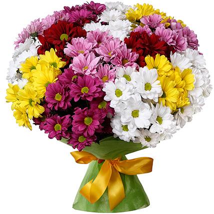 Букет хризантем «Изысканный»