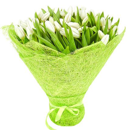 101 тюльпан белый