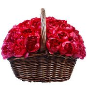 Корзина с пионами «Красная шапочка»
