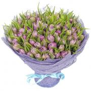101 тюльпан нежно-фиолетовый