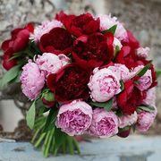 Букет из 25 красных и розовых пионов