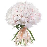 Букет из 31 нежно-розового пиона