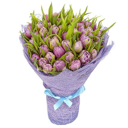 51 тюльпан нежно-фиолетовый
