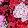 Букет с пионами и пионовидными розами «Элизабет»