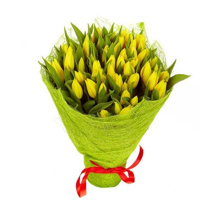 51 тюльпан. Цвет: желтый
