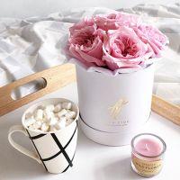 Пионовидные розы Остина «Miranda» в белой коробке Small