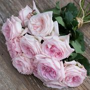 Букет из пионовидных роз «Pink O'hara»