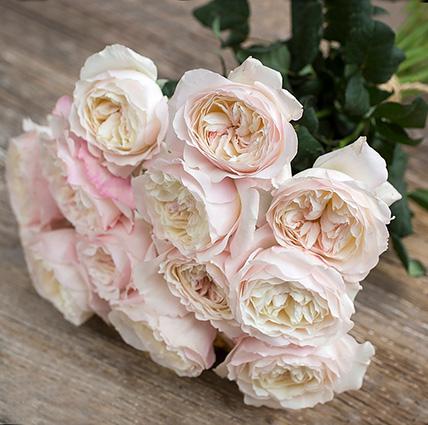 Букет из пионовидных роз Остина «Keira»