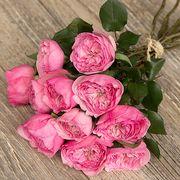 Букет из розовых пионовидных роз «Мария Терезия»