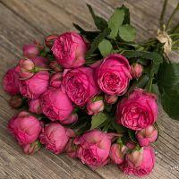 Букет из розовых пионовидных роз «Pink piano»