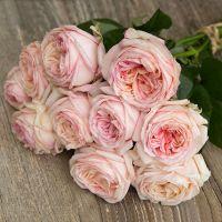 Букет из персиковых пионовидных роз «Angie romantica »