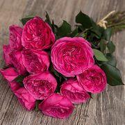 Букет из розовых пионовидных роз «Baronesse»