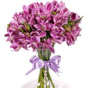 Букет с фиолетовой альстромерией «Искушение»