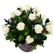 Корзина с розами «Снег»