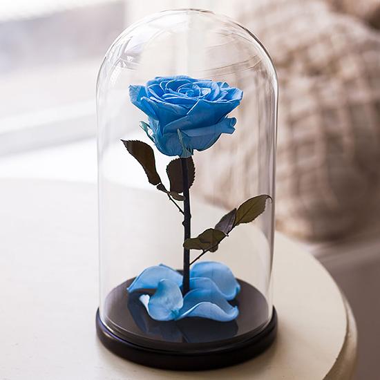 Вечная роза в стеклянной колбе голубая