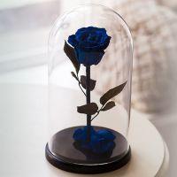 Вечная роза в стеклянной колбе синяя