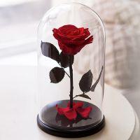 Вечная роза в стеклянной колбе красная