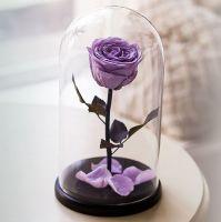 Вечная роза в стеклянной колбе сиреневая