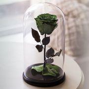 Вечная роза в стеклянной колбе зеленая