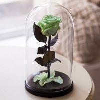 Вечная роза в стеклянной колбе салатовая