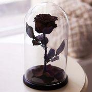 Вечная роза в стеклянной колбе черная