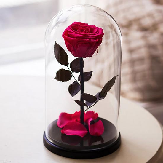 Вечная роза в стеклянной колбе «светлая вишня»