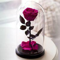 Вечная роза в стеклянной колбе «фуксия»