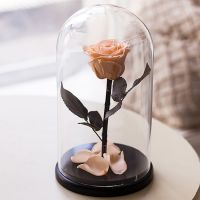 Вечная роза в стеклянной колбе персиковая