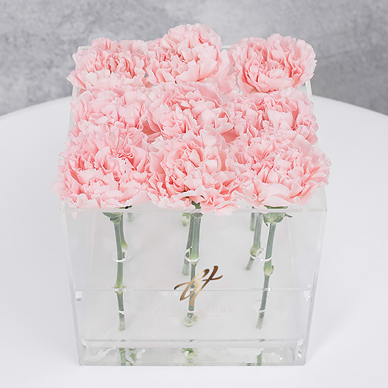 Розовый диантус в прозрачной коробке GlassBox Small