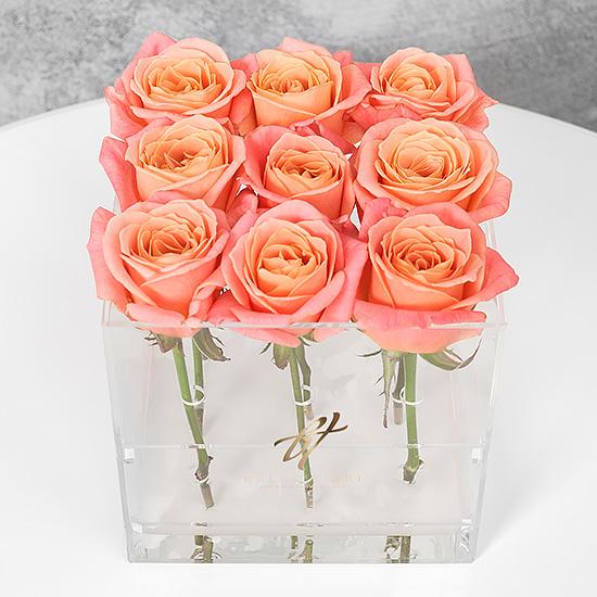 Коралловые розы в прозрачной коробке GlassBox Small