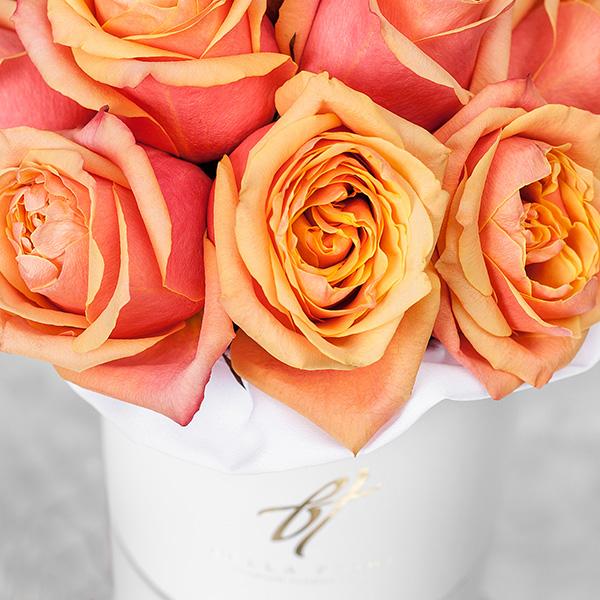 Розы «Черри бренди» в белой коробке Small