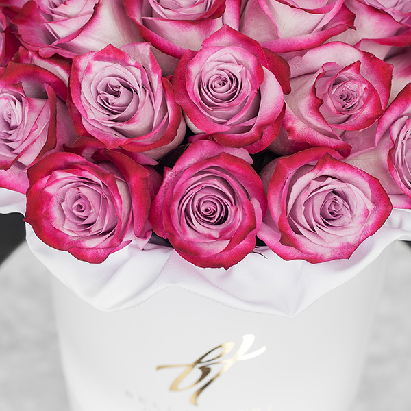 Розы «Deep purple» в белой коробке Royal