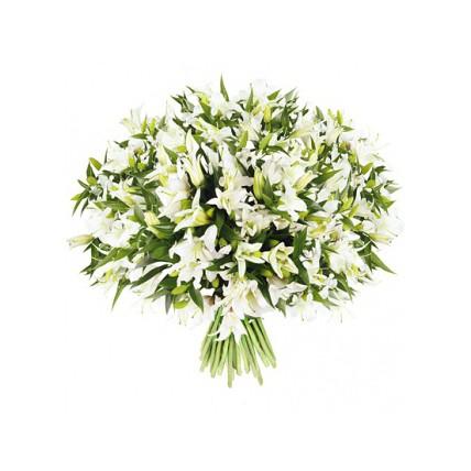 101 лилия белая