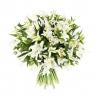 51 лилия белая