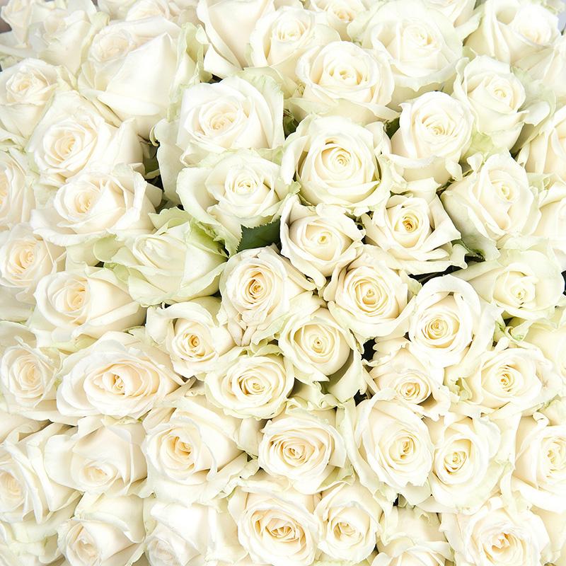 Букет белых роз «Полярная звезда»