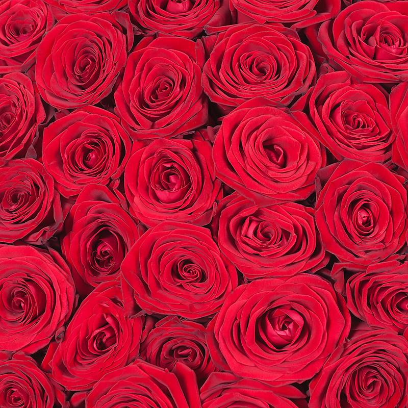 Букет красных роз «Рубины»