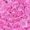 Букет роз «Фламинго»