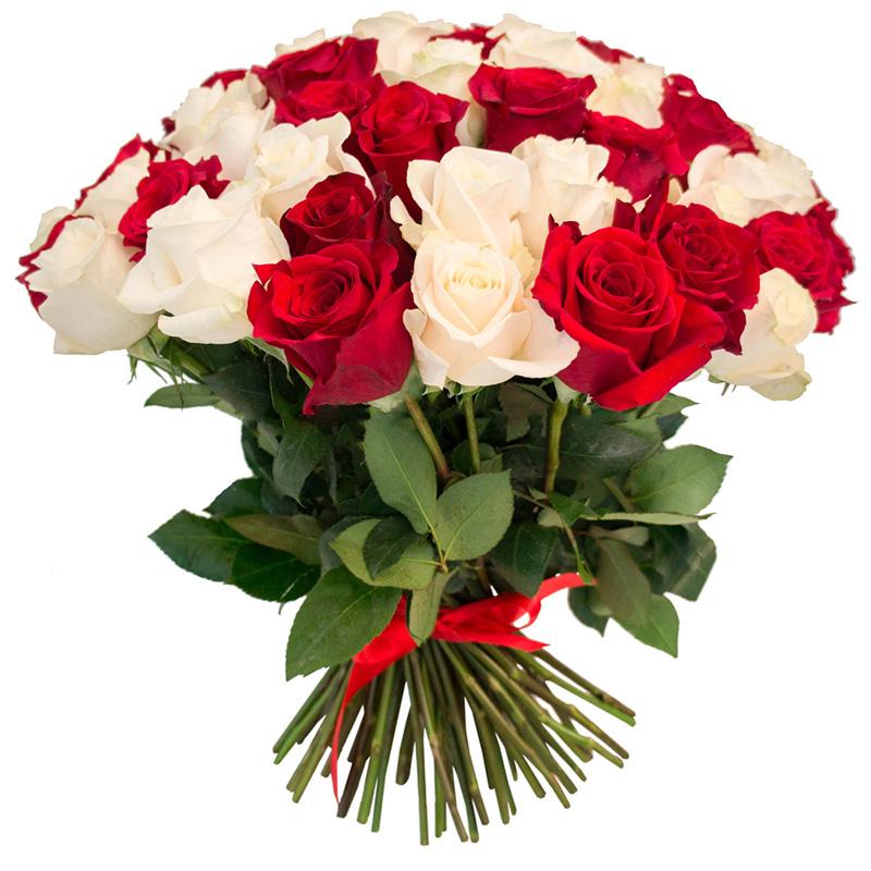 75 роз красных и белых