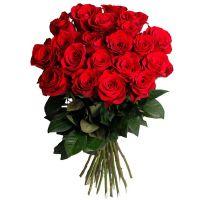 15 роз красных (50 см)