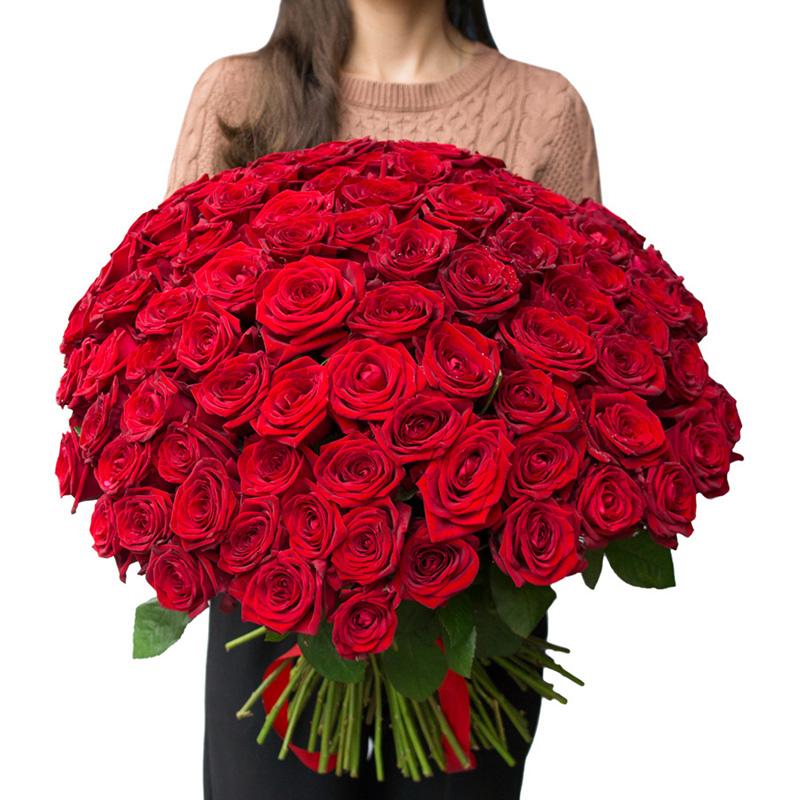 Розы, купить цветы для женщины девы