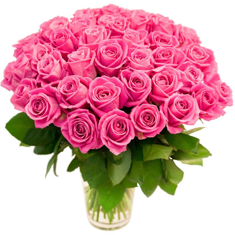 75 розовых роз