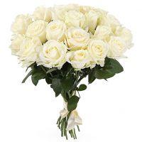 21 белая роза (50 см)