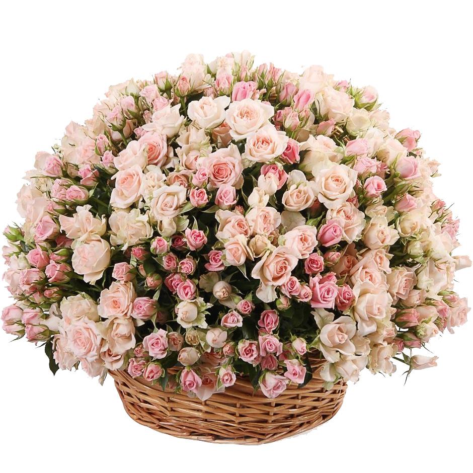 Корзина из 101 кустовой розы нежных тонов