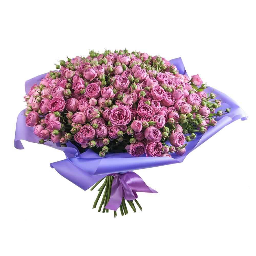 51 пионовидная роза «Мисти бабблс»
